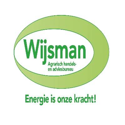 wijsman advies logo